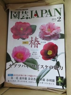 園芸JAPAN2月号入荷_f0356792_11373690.jpg