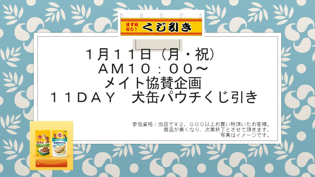 160110 イベント告知_e0181866_15483378.jpg
