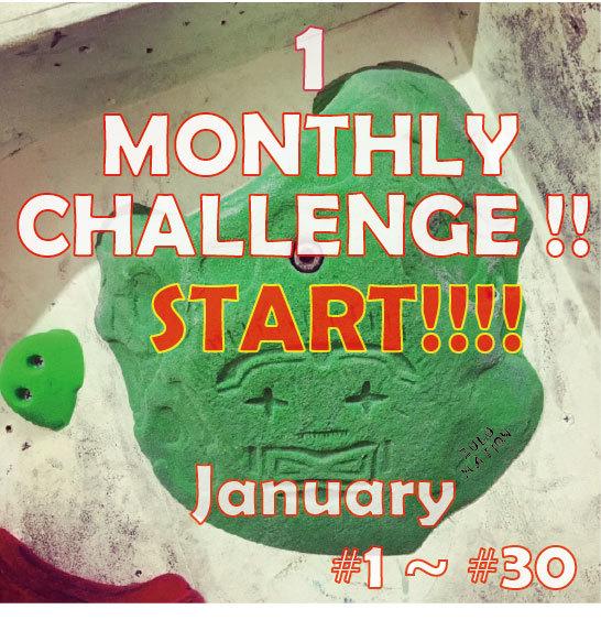 MONTHLY CHALLENGE 1月_d0246875_21335228.jpg