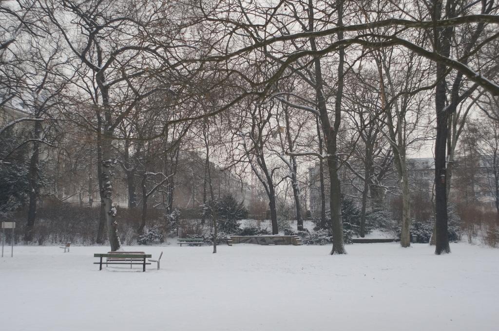 ベルリン雪景色NEX6+Hexanon35mm編_c0180686_03075125.jpg