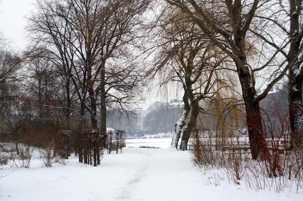 ベルリン雪景色NEX6+Hexanon35mm編_c0180686_03082331.jpg