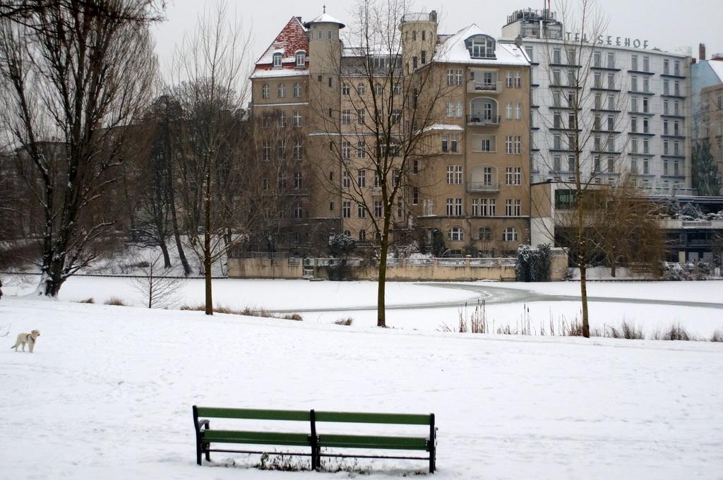 ベルリン雪景色NEX6+Hexanon35mm編_c0180686_03083001.jpg
