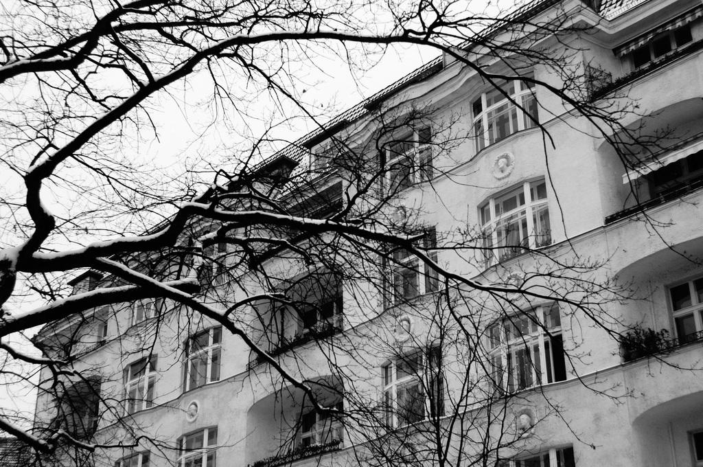 ベルリン雪景色NEX6+Hexanon35mm編_c0180686_03092917.jpg
