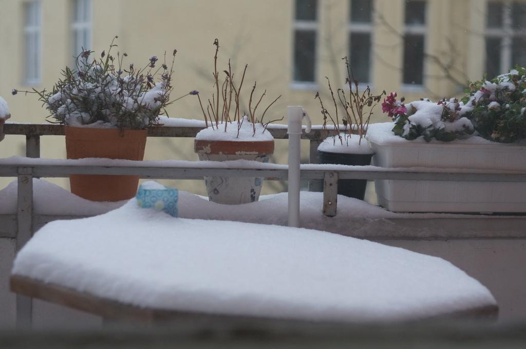 ベルリン雪景色NEX6+Hexanon35mm編_c0180686_03105856.jpg