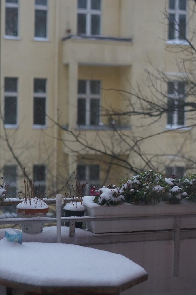 ベルリン雪景色NEX6+Hexanon35mm編_c0180686_03110419.jpg