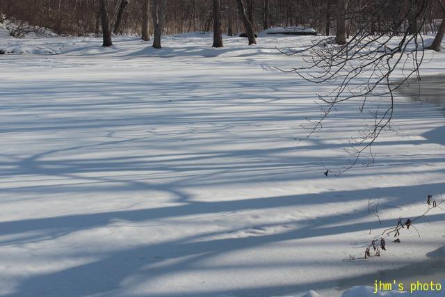 凍った湖の畔にて_a0158797_22533630.jpg