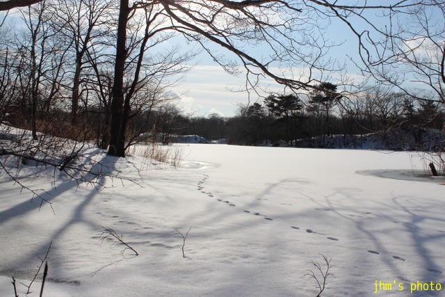 凍った湖の畔にて_a0158797_22542655.jpg