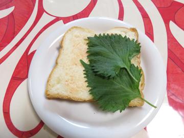 リプトンひらめき朝食 「赤富士パン」_a0150910_8502912.jpg