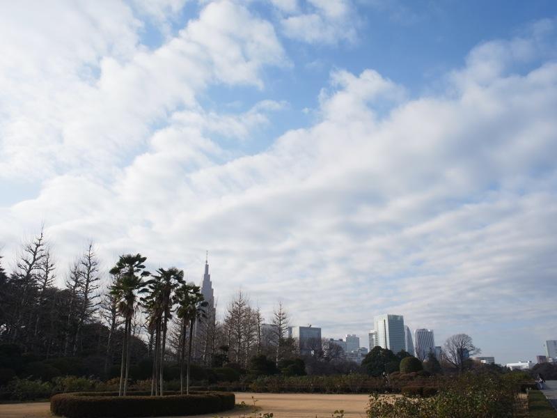 新宿御苑の風景_e0276411_2301594.jpg