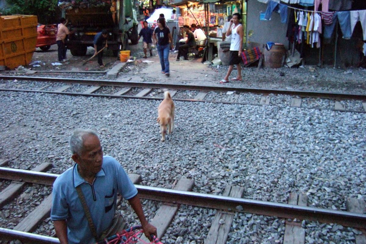 バンコク  沿線風景_b0061717_10515294.jpg