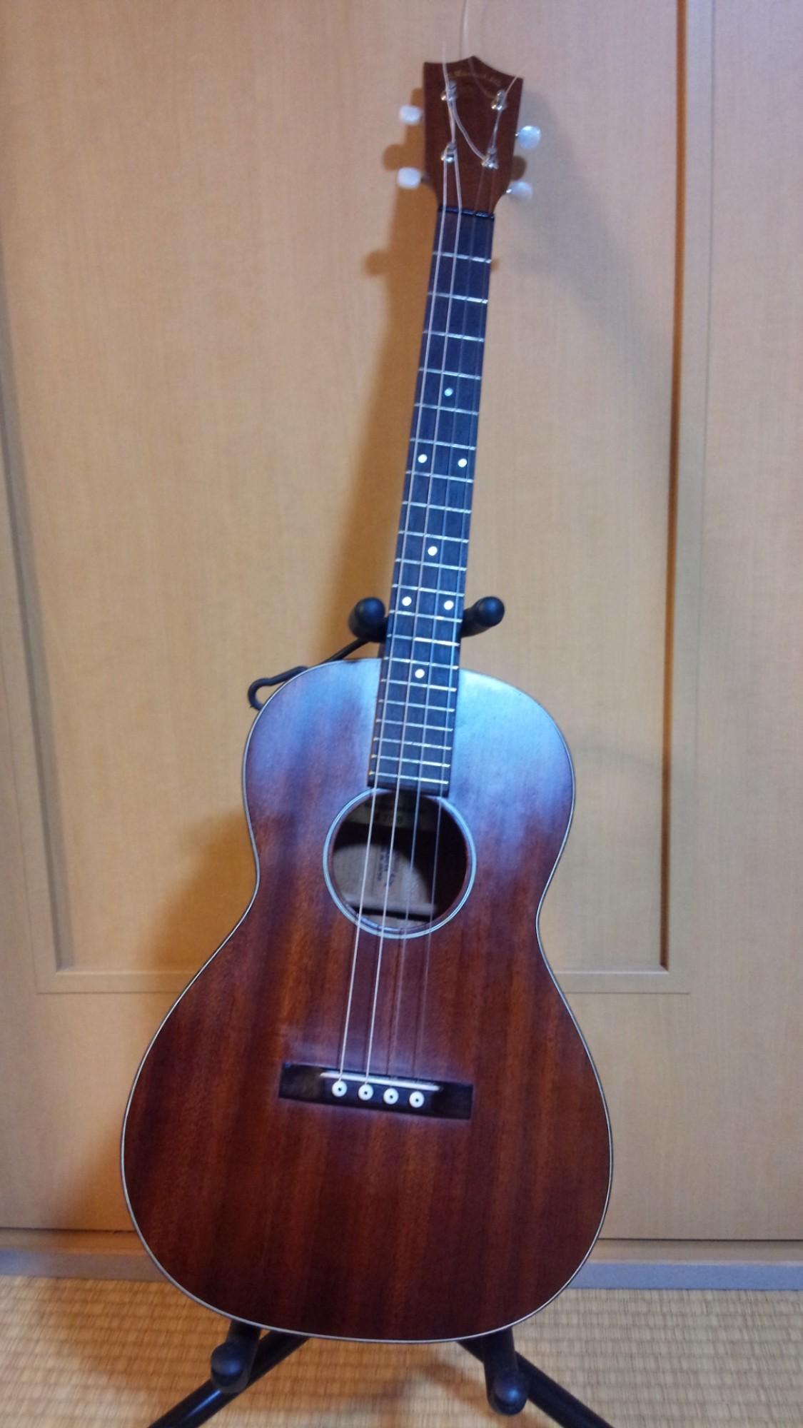 テナーギターをご存知ですか?_a0081345_2020497.jpg