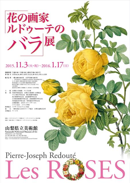 柳(ロオジエ)の花芽にキスをするウーラちゃん。_e0356356_15132142.jpg