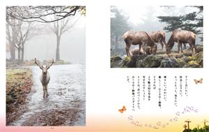 最新号 カメラ日和vol.65 「動物パラダイス」発売!_b0043961_15144517.jpg