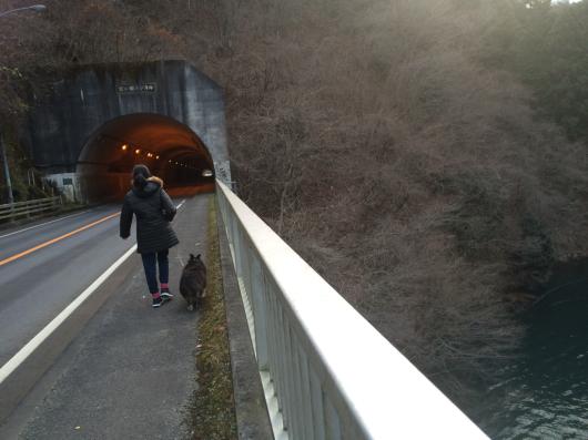 歩いた_f0126965_20523301.jpg