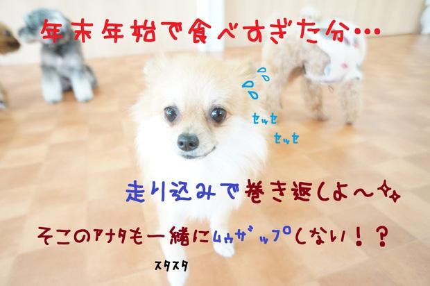 d0220513_16571751.jpg