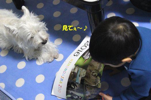 f0084422_20115039.jpg