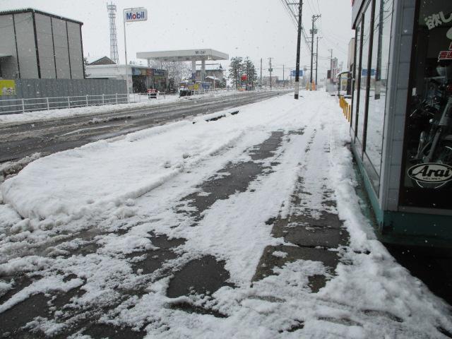 新潟市北区の積雪情報_c0080863_12302773.jpg