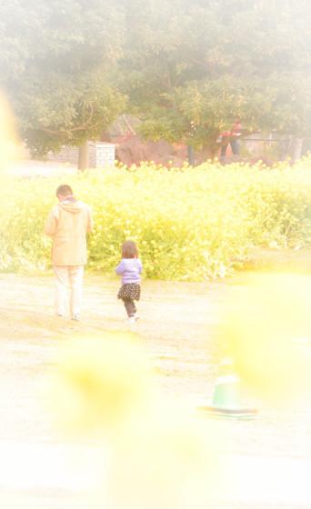 明石海峡公園 Vol.1_d0344864_21514243.jpg