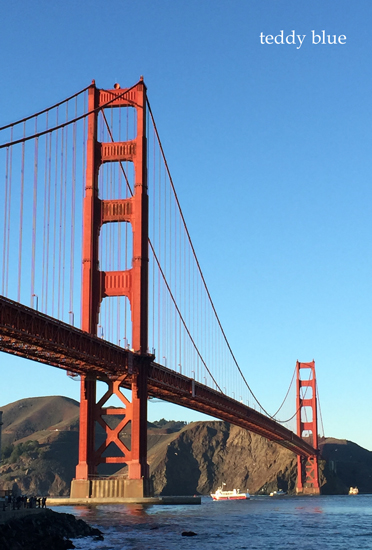 back in San Francisco  サンフランシスコ 2015 冬 _e0253364_9105820.jpg