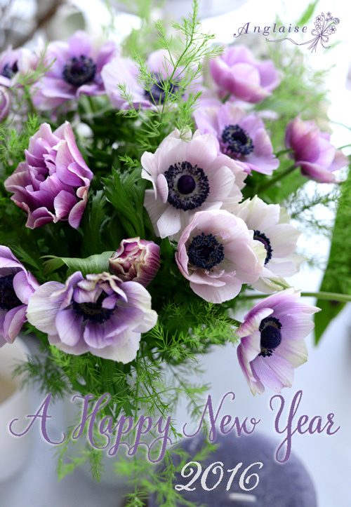 A Happy New Year 2016_f0057564_17471348.jpg