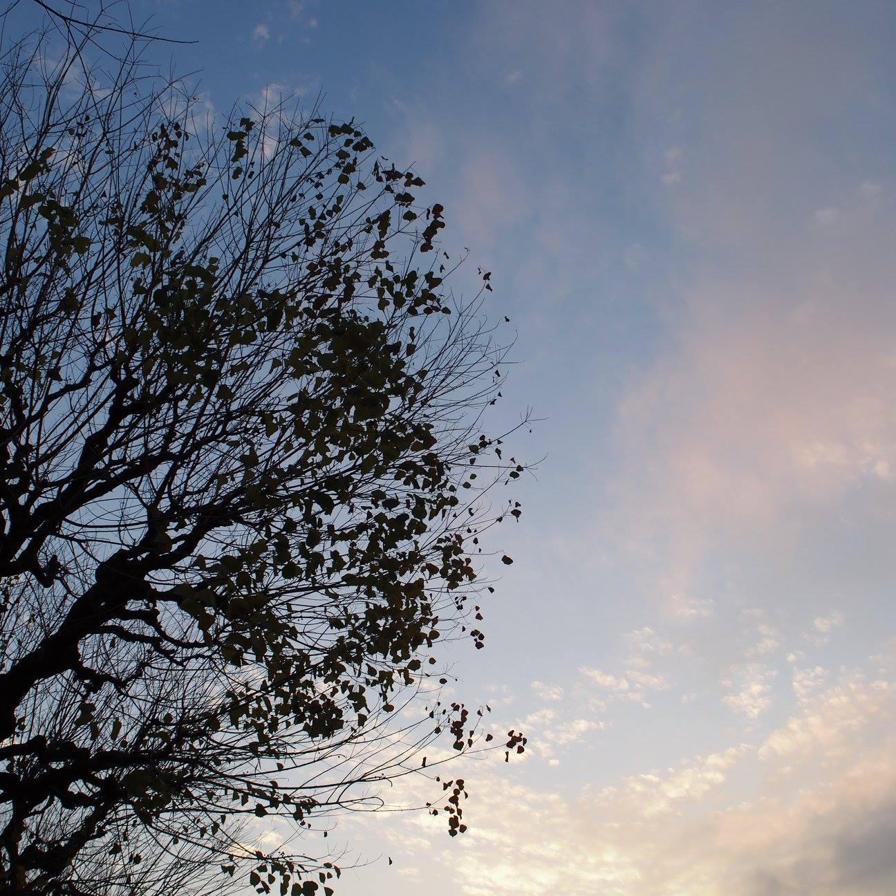 ~ 祈りの光 † Prière de Noël ~ 12/12~20 ☆ 展示風景 _c0203401_82168.jpg