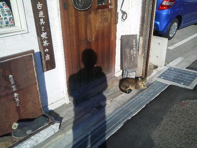 真鍮の両口匙 + のらねこ_e0350308_833834.jpg