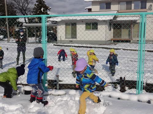 やった~雪が降ったよ!_d0166047_12291688.jpg