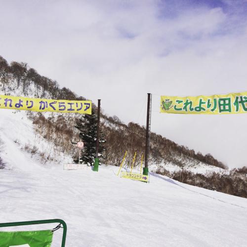 田代〜かぐらスキー場へ⭐︎_c0151965_15323920.jpg