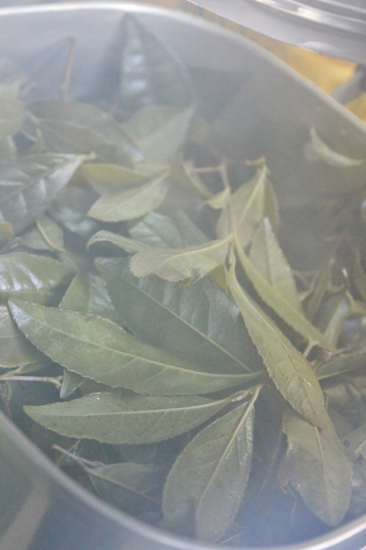 茶LON (29)_b0220318_06065588.jpg