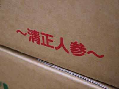 """熊本セロリ「清正人参」 これぞ""""本物""""の美味さ!最旬『セロリ』をお届けします!!_a0254656_17443541.jpg"""