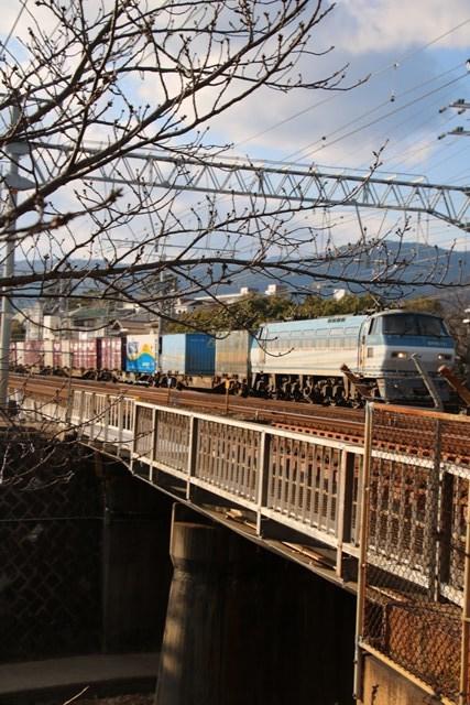 藤田八束の鉄道写真@鉄道写真の魅力山陽本線で写真に挑戦、朝日と新幹線山陽新幹線の美しさ_d0181492_17593261.jpg