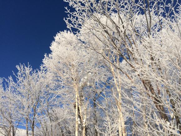 青い空と素敵な景色。_f0096216_08341856.jpg