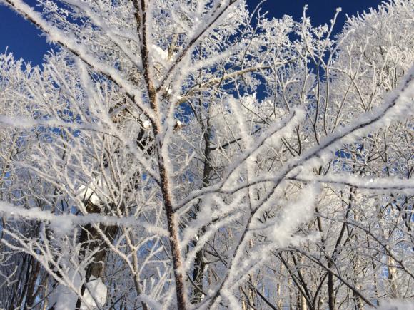 青い空と素敵な景色。_f0096216_08341966.jpg