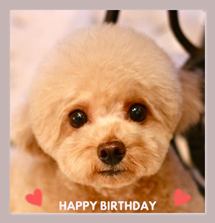 Happy Birthday♡あいりちゃん_d0060413_19514723.jpg