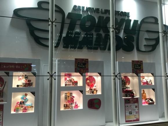 東急ハンズ新宿高島屋タイムズスクエアー店へ_e0071324_15460394.jpeg