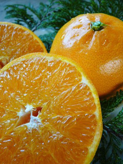 究極の柑橘「せとか」 収穫まであと1ヵ月!2月上旬の出荷に向け仕上げていきます!_a0254656_16314398.jpg