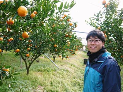 究極の柑橘「せとか」 収穫まであと1ヵ月!2月上旬の出荷に向け仕上げていきます!_a0254656_16494620.jpg