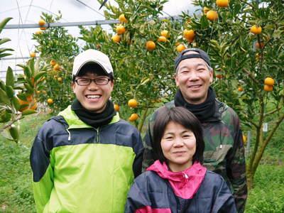 究極の柑橘「せとか」 収穫まであと1ヵ月!2月上旬の出荷に向け仕上げていきます!_a0254656_17251598.jpg