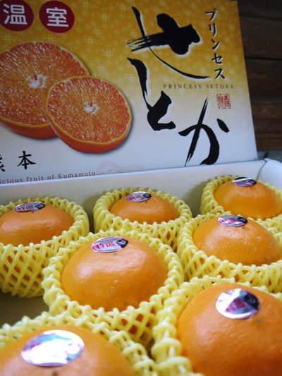 究極の柑橘「せとか」 収穫まであと1ヵ月!2月上旬の出荷に向け仕上げていきます!_a0254656_179719.jpg