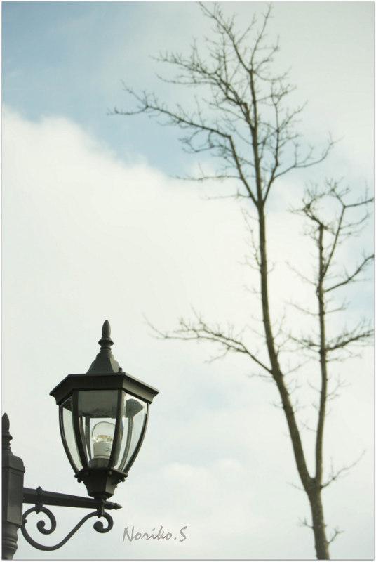 冬の風景_d0344864_16355606.jpg