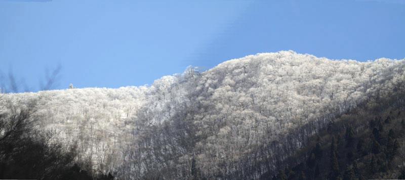 雪の武奈ヶ岳_b0223198_19432401.jpg