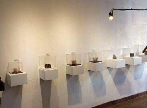 岩谷雪子さんの展示1_f0351305_19013262.jpg
