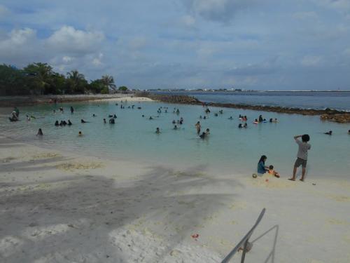 モルディブの首都島マレで泳げる場所とビリンギリ島_a0349326_2221388.jpg