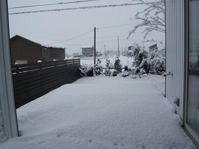 雪と女子会_c0369433_10082986.jpg