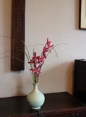 花だより 和蘭 _a0279848_15031121.jpg