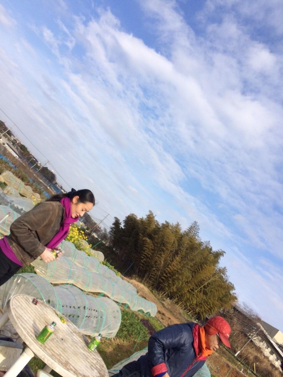 今日は雪対策 飯田 石川さん 吉田さんの3名_c0222448_15532994.jpg