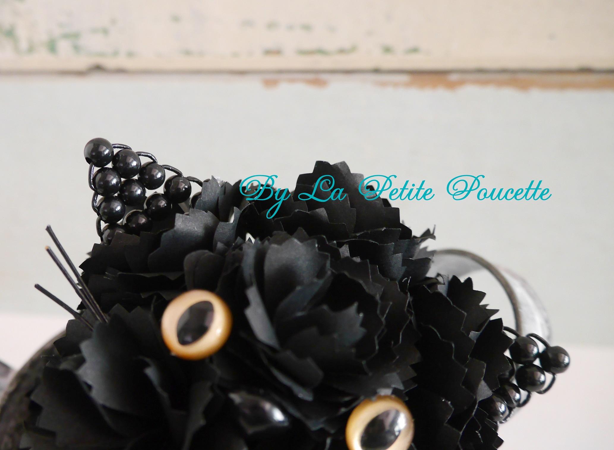 ペルシャの黒仔猫 「セレネー」ちゃん_b0301949_15254086.jpg