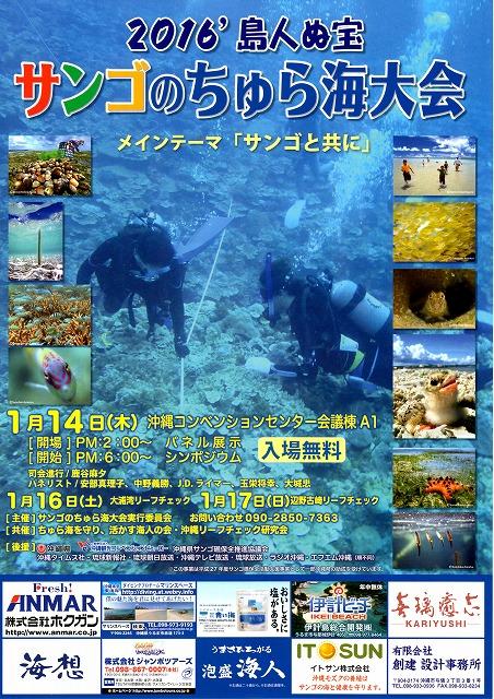 サンゴのちゅら海大会_c0180460_23401.jpg