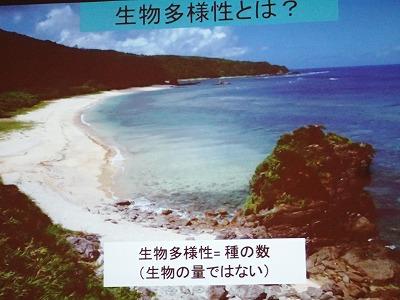 サンゴのちゅら海大会_c0180460_2391085.jpg