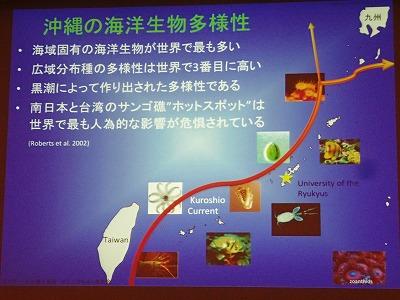サンゴのちゅら海大会_c0180460_2393188.jpg